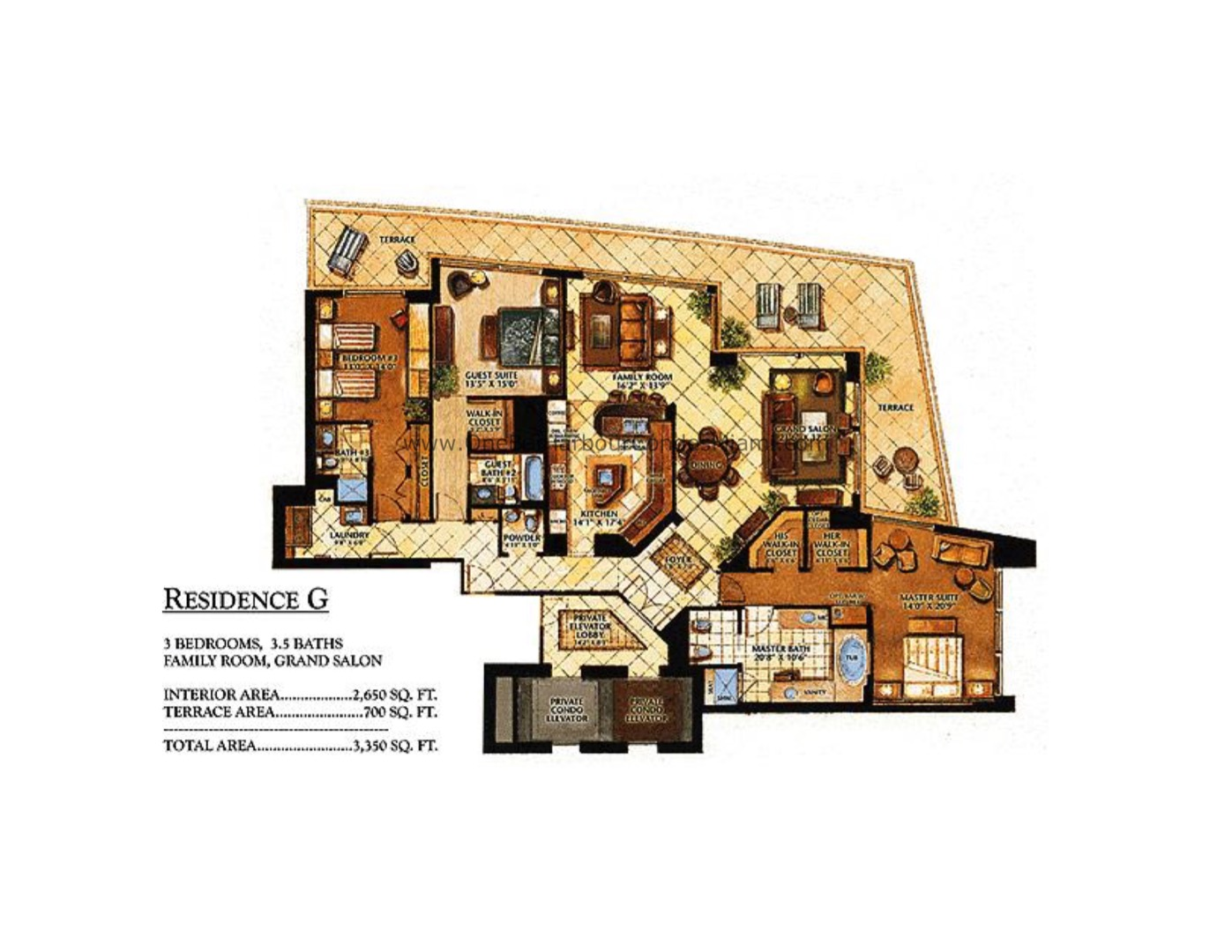 Floor plan image G - 3/3/1  - 2650 sqft image
